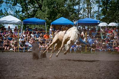 2016 rodeo sunday broncs-4856