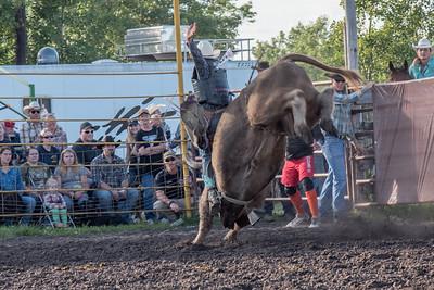 2016 rodeo friday bulls-3278