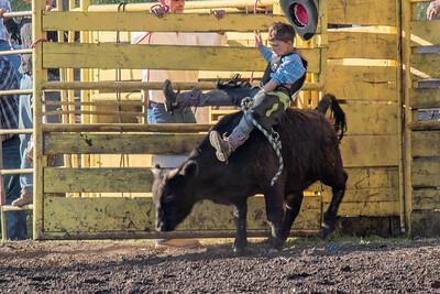 2016 rodeo friday bulls-3248