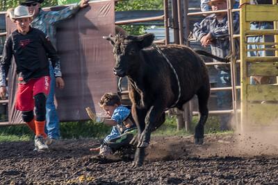2016 rodeo friday bulls-3251