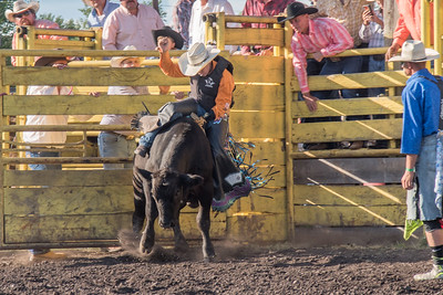 2016 rodeo friday bulls-3244