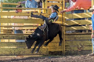 2016 rodeo friday bulls-3247