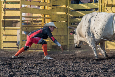 2016 rodeo friday bulls-3271