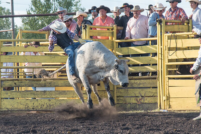 2016 rodeo friday bulls-3257