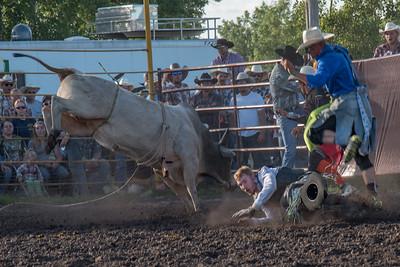 2016 rodeo friday bulls-3302