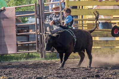 2016 rodeo friday bulls-3249