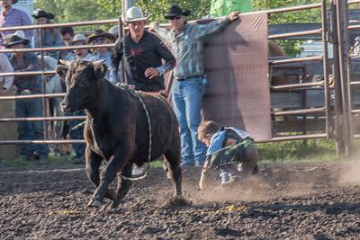 2016 rodeo friday bulls-3254