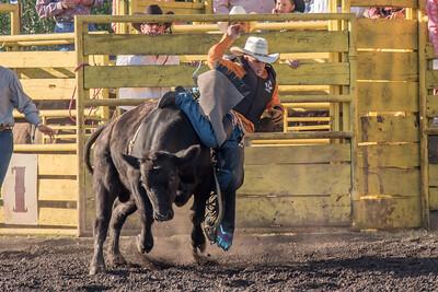 2016 rodeo friday bulls-3245