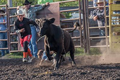 2016 rodeo friday bulls-3252