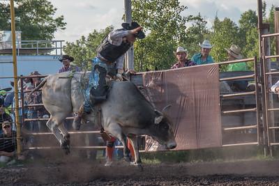 2016 rodeo friday bulls-3292