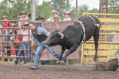 2016 rodeo saturday bulls-4240