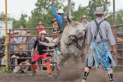 2016 rodeo saturday bulls-4227