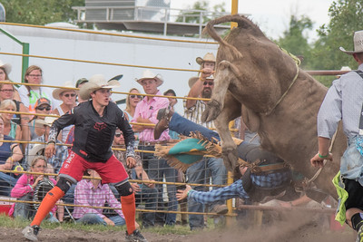 2016 rodeo saturday bulls-4215