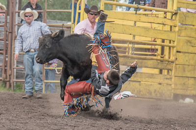2016 rodeo saturday bulls-4206