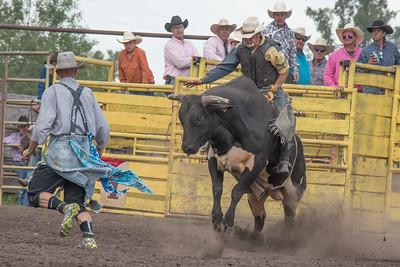 2016 rodeo saturday bulls-4260
