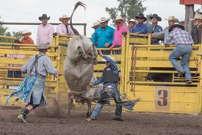 2016 rodeo saturday bulls-4247
