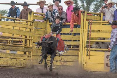 2016 rodeo saturday bulls-4201