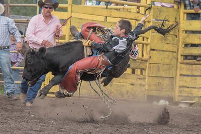 2016 rodeo saturday bulls-4204
