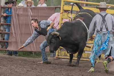 2016 rodeo saturday bulls-4237