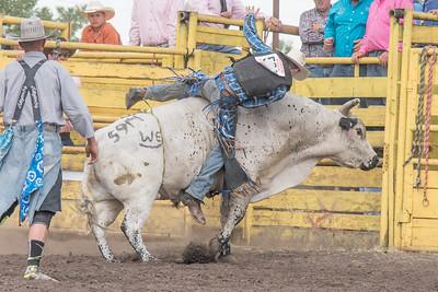 2016 rodeo saturday bulls-4246