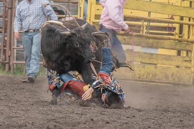 2016 rodeo saturday bulls-4207