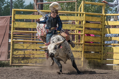 2016 rodeo sunday bulls-5327