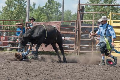 2016 rodeo sunday bulls-5296