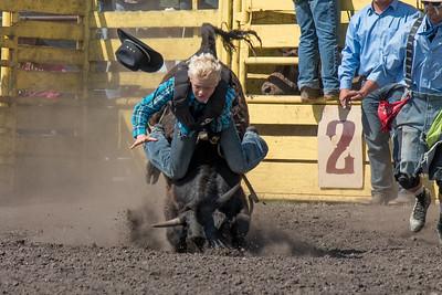 2016 rodeo sunday bulls-5302