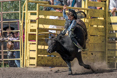 2016 rodeo sunday bulls-5291