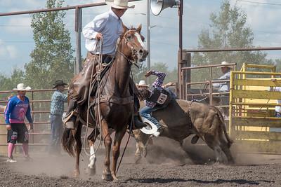2016 rodeo sunday bulls-5313