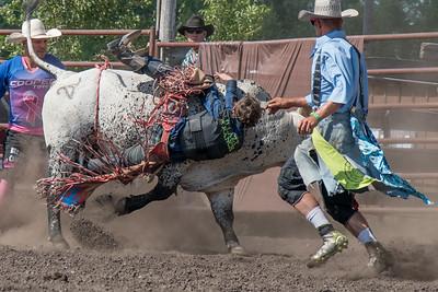 2016 rodeo sunday bulls-5335