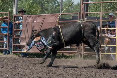 2016 rodeo sunday bulls-5294