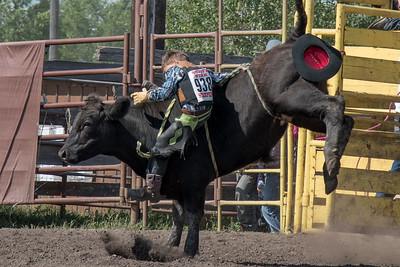 2016 rodeo sunday bulls-5293