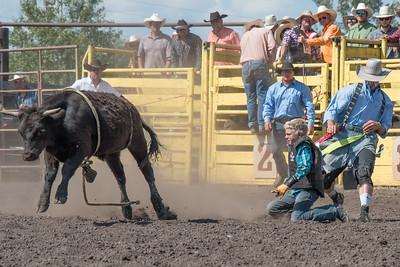 2016 rodeo sunday bulls-5310