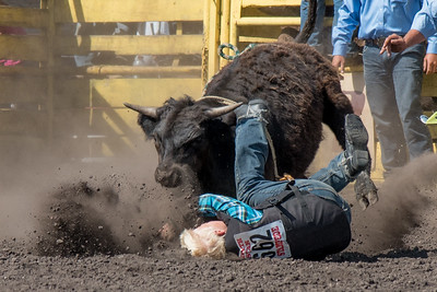 2016 rodeo sunday bulls-5305