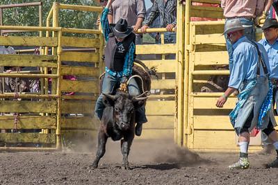 2016 rodeo sunday bulls-5298