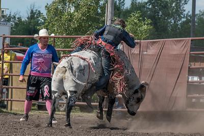 2016 rodeo sunday bulls-5332
