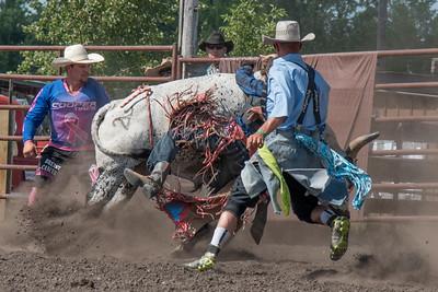 2016 rodeo sunday bulls-5336