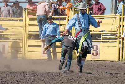 2016 rodeo sunday bulls-5311