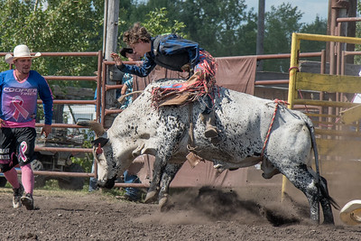 2016 rodeo sunday bulls-5330