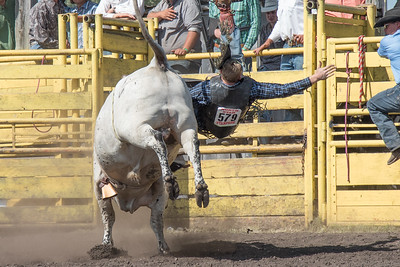 2016 rodeo sunday bulls-5320