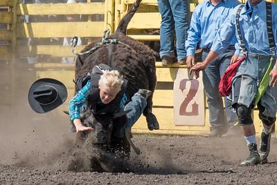 2016 rodeo sunday bulls-5303