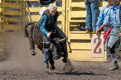 2016 rodeo sunday bulls-5301