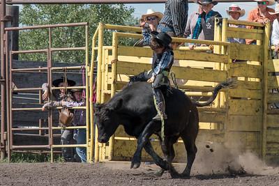 2016 rodeo sunday bulls-5292