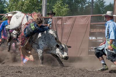 2016 rodeo sunday bulls-5334