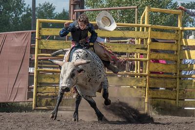 2016 rodeo sunday bulls-5328