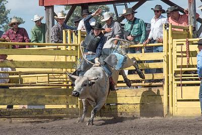 2016 rodeo sunday bulls-5316