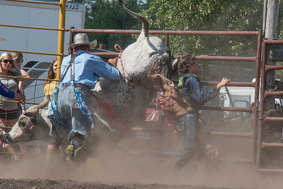 2016 rodeo sunday bulls-5344