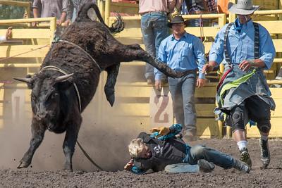 2016 rodeo sunday bulls-5308