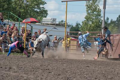 2016 rodeo sunday bulls-5346